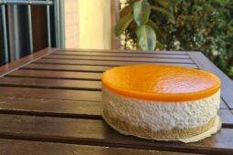 Cheesecake alle albicocche senza cottura